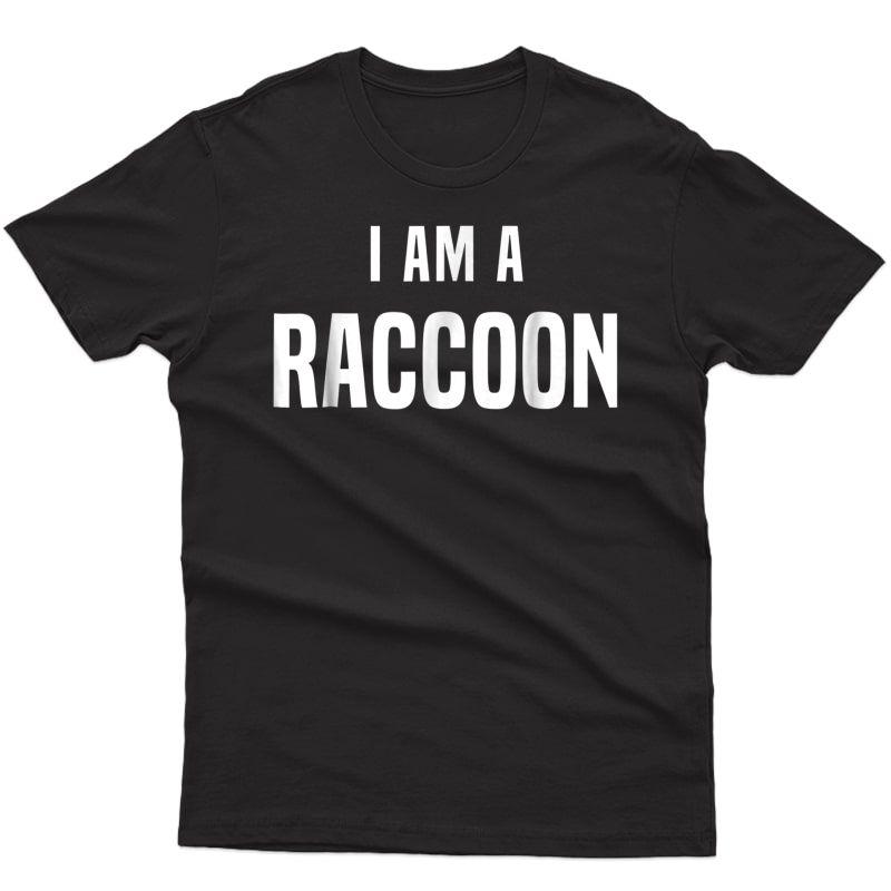 Raccoon Costume Shirt Easy Simple Halloween Costumes